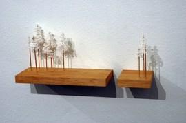 白い壁に作り付けられた木のディスプレイ棚